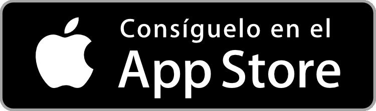 App toma de datos certificado energético ipad